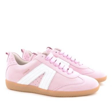 CPH413 Pink C27