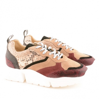 7530 Snake Taupe/Bordeaux A25